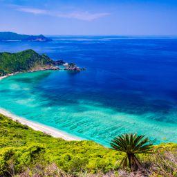 世界自然遺産の奄美大島にある加計呂麻島